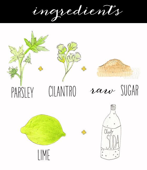 fizzy.herb